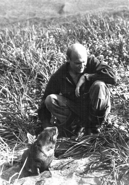 С щенком северного морского котика, черненьким (ле-ще Северное, о. Беринга)