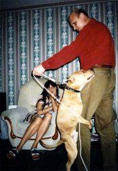 Американский стаффордширский терьер Чак, 9 мес. (агрессия)