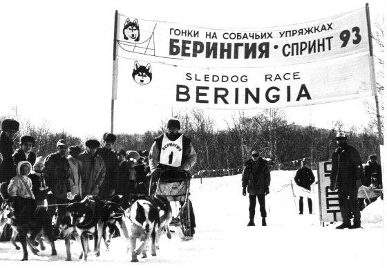 Гонки на собачьих упряжках Берингия-Спринт