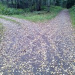 Развилка дорог в осеннем лесу