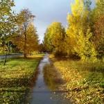 А осень была в разгаре ...