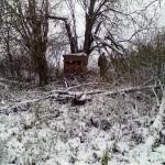 Браконьеры устроили скрадок для охоты на кабана