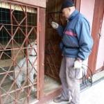 Через семь дней - Нора послушно садится, когда открываю дверь вольера