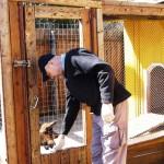 Немецкая овчарка Алекс. Проверяю реакцию собаки