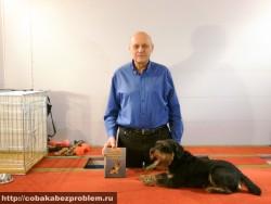 Подготовлен к продаже видео курс дрессировки собак ЛИРОС