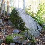 Большой камень может служить хорошей когтеточкой