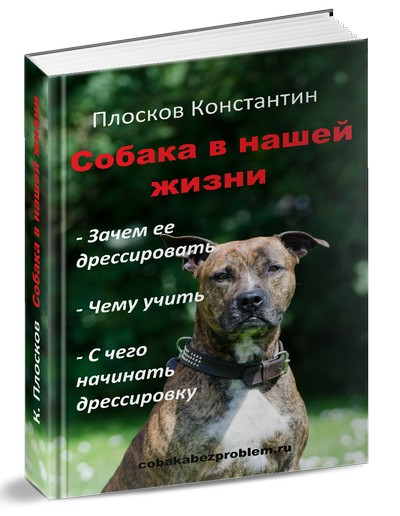 oblozhka_cr