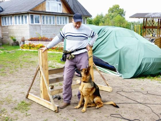 Через такой барьер я учил прыгать немецкую овчарку Зафи