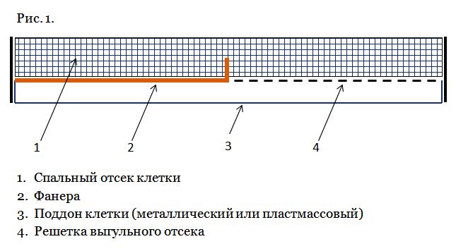 Схема организации спального и выгульного отсека в клетке (вид сбоку)